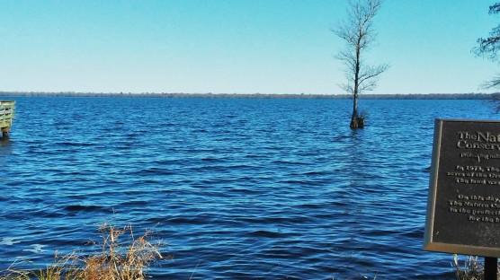 20171221_124820 Lake Drummond